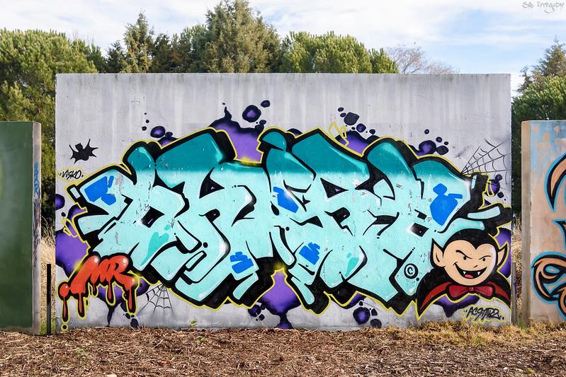 Local graffiti crew in Salamanca